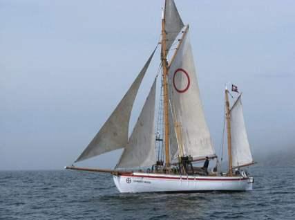 tn-vessel@2x